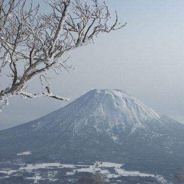 evotrip-japan-niseko_-fixedbackground-banner-image-desktop_1920x700