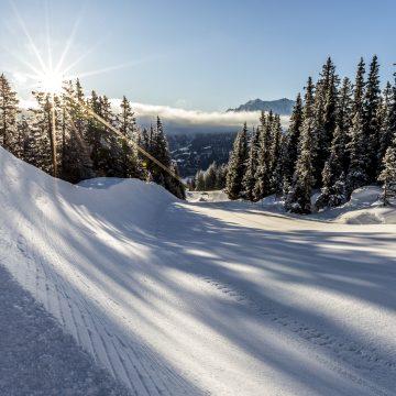 20180213_LAAX_SNOWPARK_012