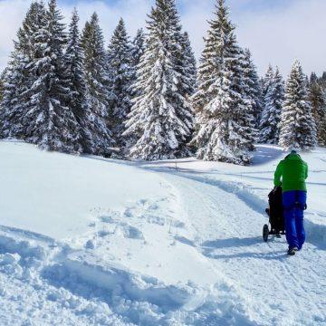 win-passeggino-sulla-neve-2017-2-fileminimizer-